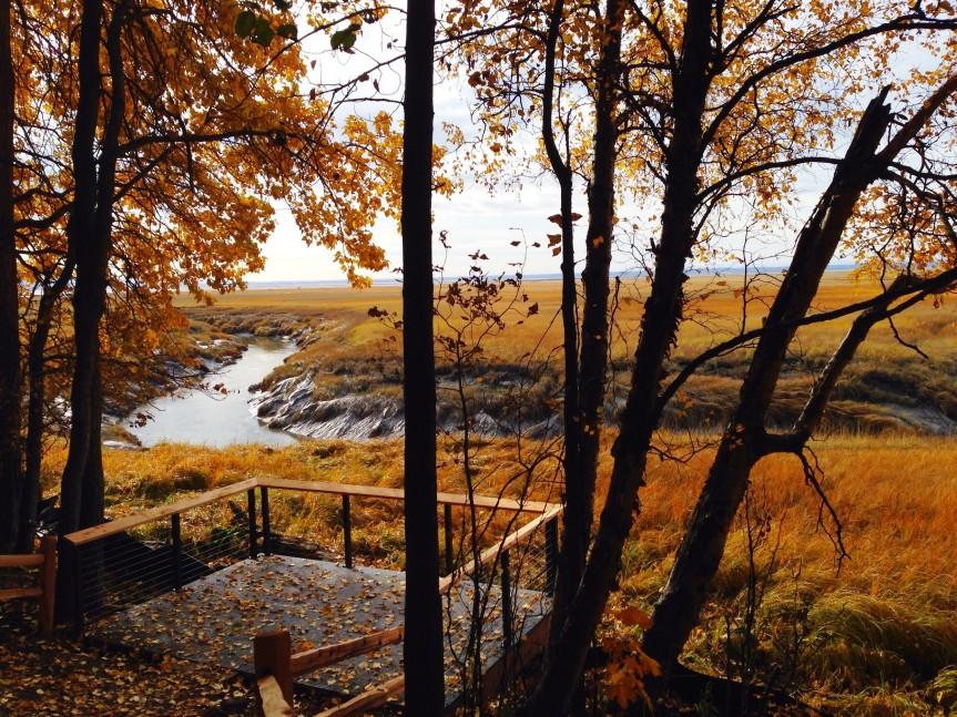 campbell creek 2